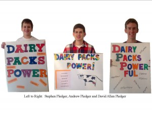 Cover photo for 4-H Dairy Poster Contest Winners