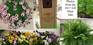 Cover photo for Forsyth 4-H Plant Sale; Now Taking Orders
