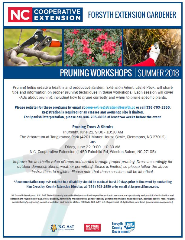 Summer Pruning Workshop Flyer