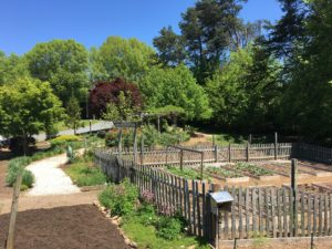 Forsyth County Demonstration Garden