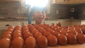 Child looking at fresh eggs