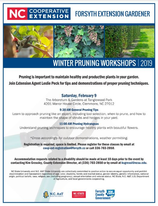 February 2019 Pruning classes flyer
