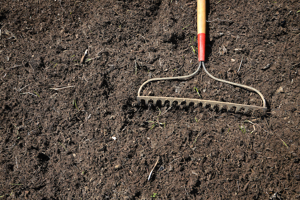 Soil with hoe