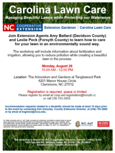 Carolina Lawn Care flyer