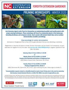 Winter 2020 pruning flyer
