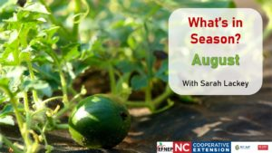 Cover photo for What's in Season: August