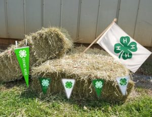 Cover photo for Forsyth 4-H Hay Bale Decorating Contest