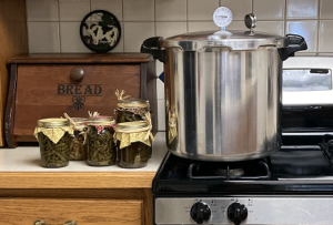 Cover photo for Canner Lid Testing