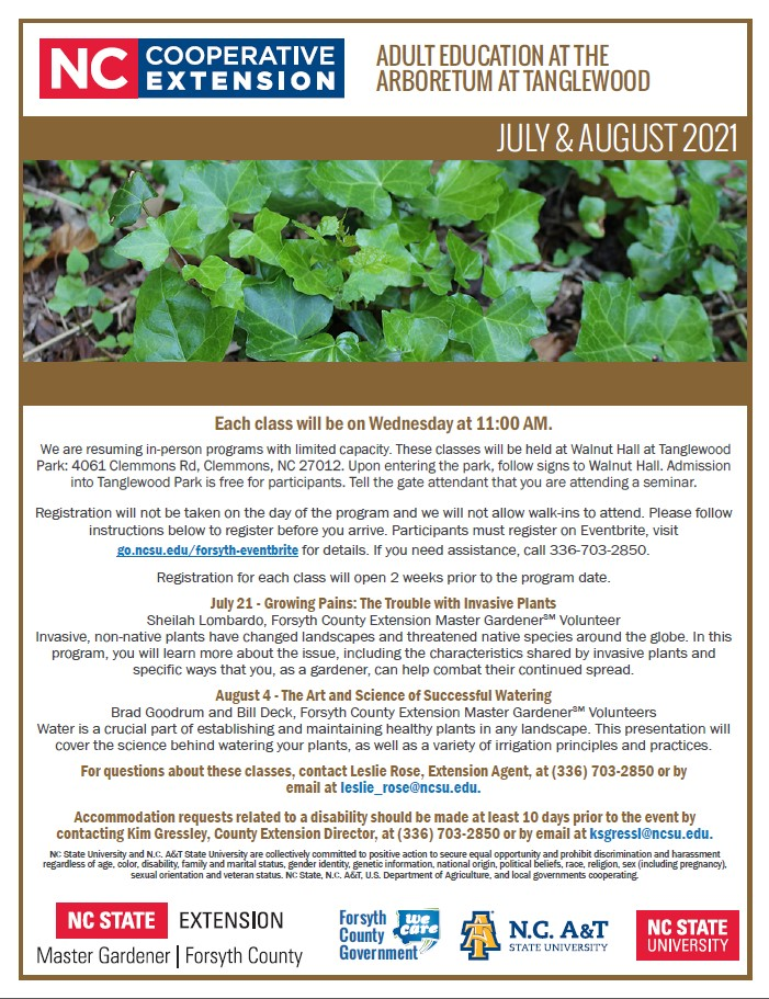 July and August 2021 Adult Education flyer