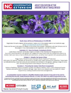 Fall 2021 Adult Education flyer