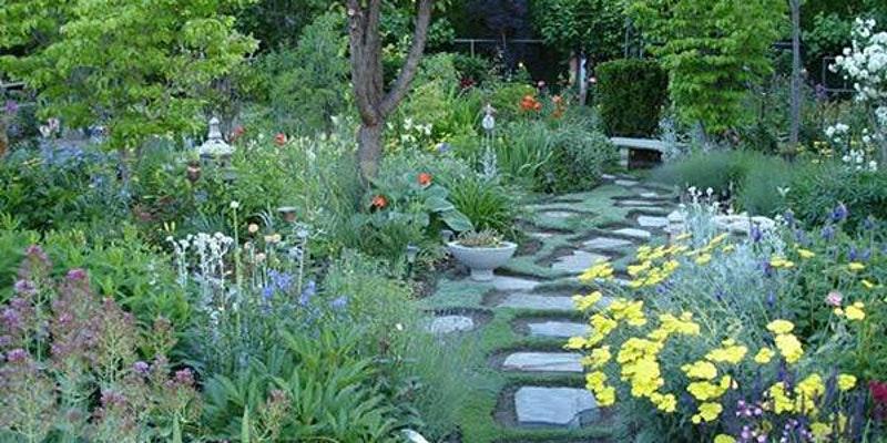 Stone path through a garden
